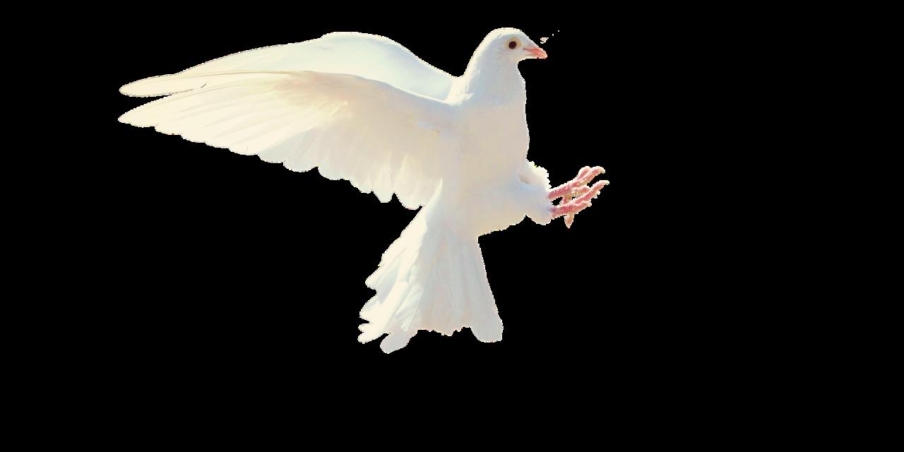 Be i Den hellige ånd  5.1.21
